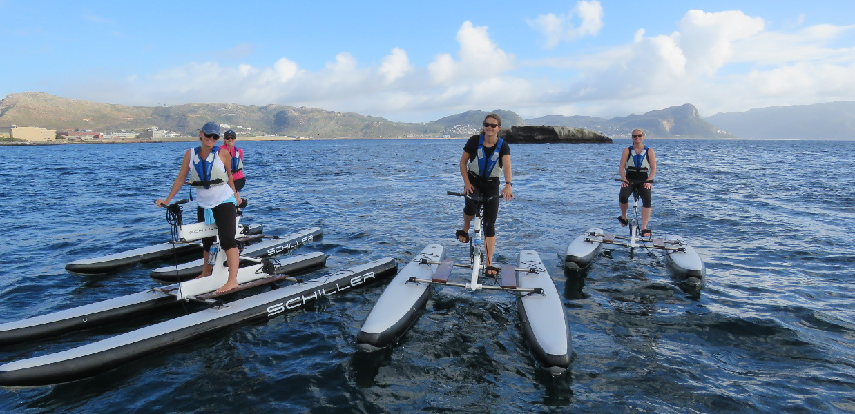 Cape Town Kayak Adventure
