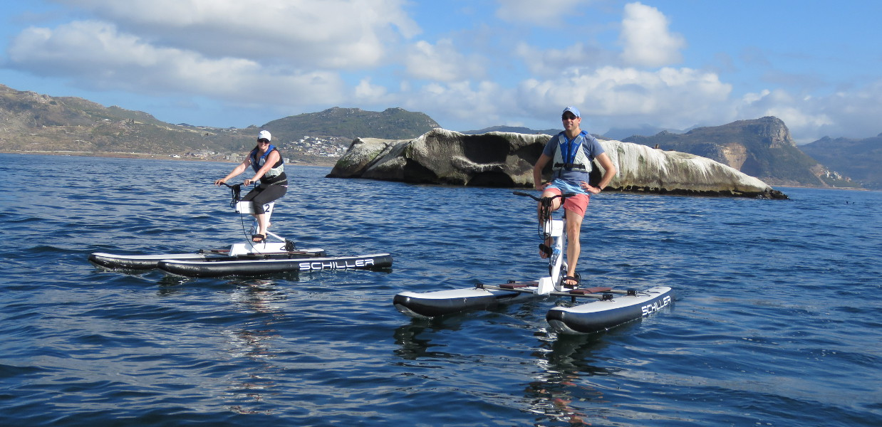 Marine Trip Cape Town
